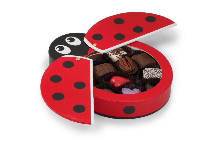 Lady Bug Gift Box